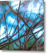 Branches 24 Metal Print