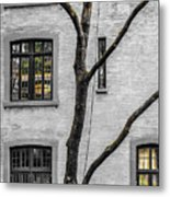Branches And Windows Metal Print