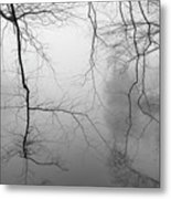 Branches In The Morning Mist Metal Print