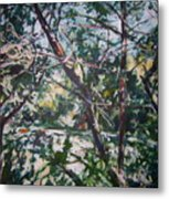 Branches Of Light Metal Print
