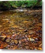 Brandywine Creek  Metal Print