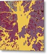 Brandywine  Maple Fall Colors 7 Metal Print