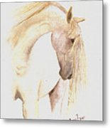 White Horse From The Wild Metal Print