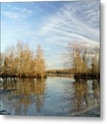 Brazos Bend Winter Reflections Metal Print