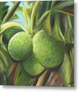 Breadfruits St Kitts Metal Print