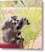 Breakfast Guests Metal Print
