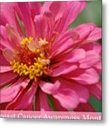 Breast Cancer Awareness Month Metal Print