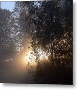 Breath Of Sunshine Metal Print