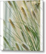 Breeze Metal Print