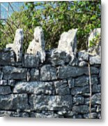 Briars And Stones New Quay Ireland County Clare Metal Print
