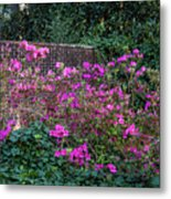 Brick Wall And Azalea Metal Print