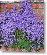 Brick Wall With Blue Flowers Metal Print