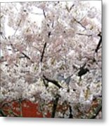 Bricks And Blossoms Metal Print