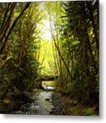 Bridge In The Rainforest Metal Print