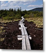 Bridge To Mizpah Metal Print