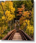 Bridge To Rainbow Falls Metal Print