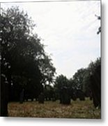 Bright And Sunny Day In The Cemetery Metal Print