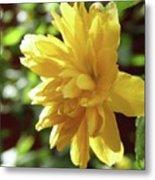 Bright As Yellow Metal Print