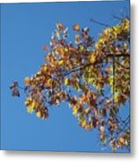 Bright Autumn Branch Metal Print