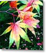 Bright Autumn Leaves Tatton Park Metal Print