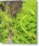 Bright Green Asbyrgi Canyon In Iceland Metal Print