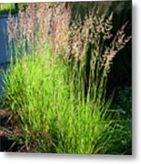 Bright Green Grass By The Pond Metal Print