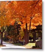 Bright Maple Morning Metal Print