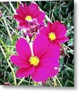 Bright Pink Flowers Metal Print