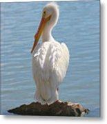 Bright White Pelican Metal Print
