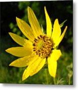 Bright Yellow Flower Metal Print