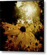 Brighten Up Metal Print