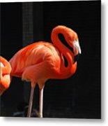 Brilliant Pink Flamingo Metal Print