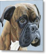 Brindle Boxer Dog - Jack Metal Print