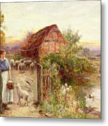Bringing Home The Sheep Metal Print by Ernest Walbourn