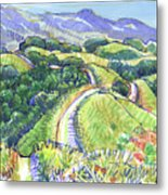 Briones Crest In May, Lafayette, Ca Metal Print
