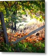 Broken Fence In Sycamore Park Metal Print