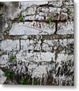 Broken Stucco Wall With Whitewashed Exposed Brick Texture And Ve Metal Print