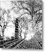 Broken Trees Metal Print