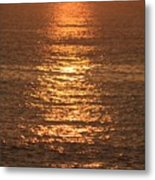 Bronze Reflections Metal Print