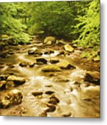 Bronze Stream Metal Print