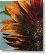 Bronzed By The Sun Metal Print