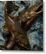 Brook Trout Metal Print by Dawn Senior-Trask