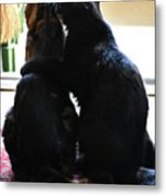 Brotherly Cat Love Metal Print