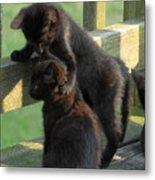 Brotherly Love Metal Print by Joyce StJames