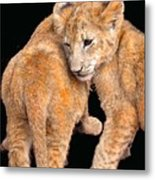 Brotherly Love Metal Print