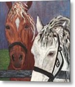 Brown And White Horses Metal Print