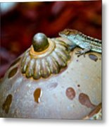Brown Anole Metal Print