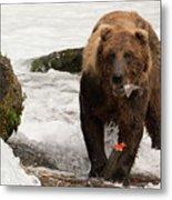 Brown Bear Eating Salmon Tail Beside Rocks Metal Print