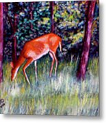 Brown County Deer Metal Print