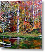 Brown County In Fall Metal Print